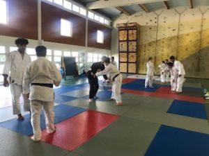 Zoom sur l'enseignement optionnel Judo : partager des valeurs autrement !