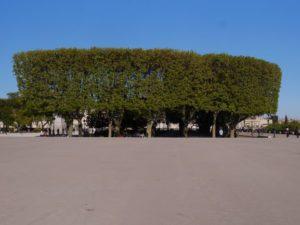 Visite de la promenade royale du Peyrou à Montpellier